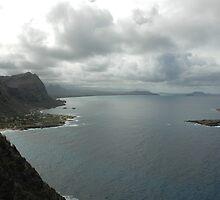 Oahu's Windward Coast by Terence Wilson