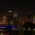 Night Time Houston Skyline by Terence Wilson