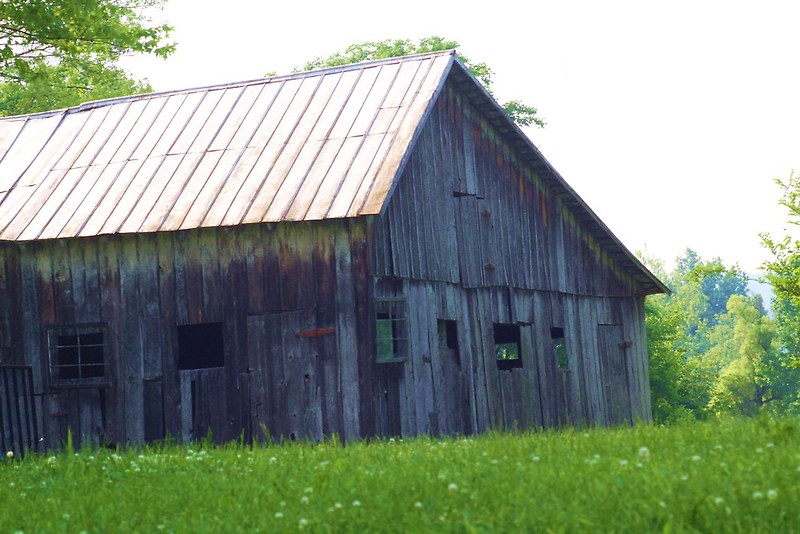 ANOTHER BARN FROM THE PAST by Pauline Evans