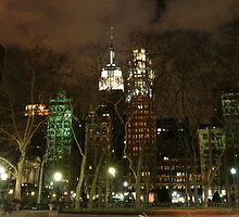 The Empire State Building - New York City by Terence Wilson