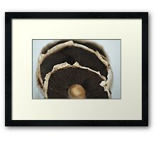 There's Not Mush Room Here! Framed Print