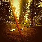 Swings - Laurelhurst Park Portland Oregon by KeriFriedman