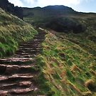 Stairs up to King Arthurs Seat, Edinburgh by Laura Cooper