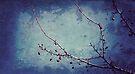 berry blue by Angel Warda