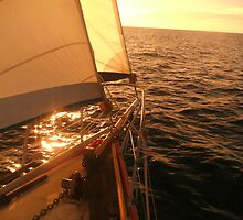 Sailing the South-East Winds - course 315 degrees by leighroy