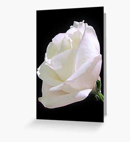 Heavenly Rose Greeting Card