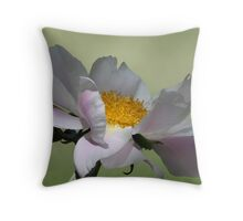 Soft Sided/Peony Throw Pillow