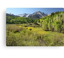 Spring Greens Canvas Print