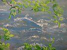 River Spring by Karen Ilari