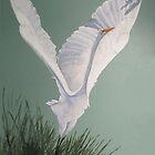 Great White by Karen Ilari