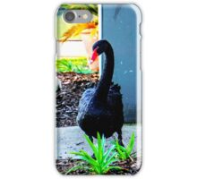 Black Swan Parade - Cob, Pen and their Cygnets iPhone Case/Skin