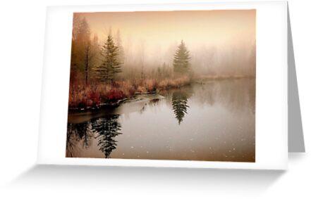 Peaceful by Gisele Bedard
