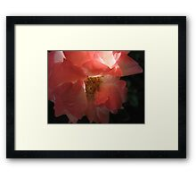 Poker Hot Rose Framed Print