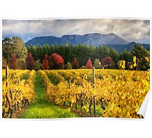 Boynton's Feathertop Winery #5 Poster