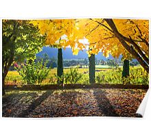 Boynton's Feathertop Winery #10 Poster