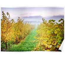 Boynton's Feathertop Winery #7 Poster