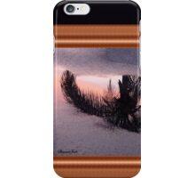 Florida Puddle Reflection iPhone Case/Skin