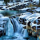 Elbow Falls by Sean Jansen