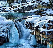 Elbow Falls by Sean Jansen