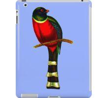 The mountain trogon (Trogon mexicanus) iPad Case/Skin