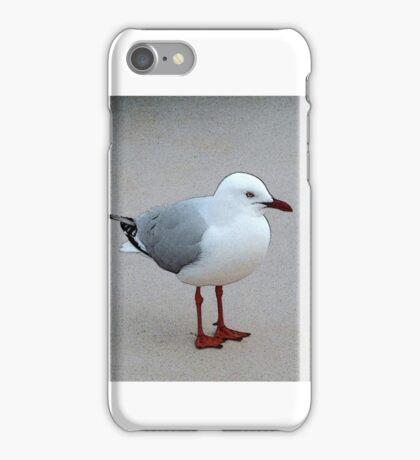 Silver Gull iPhone Case/Skin