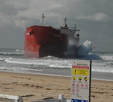 Pasha Bulker and sign, Newcastle, Australia 2007 by muz2142
