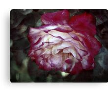 Romantic Dreaming Canvas Print