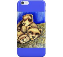Ferret Layer cake  iPhone Case/Skin