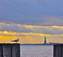 Stillness in Battery Park by Jen Waltmon