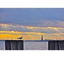 Stillness in Battery Park Photographic Print