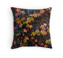 Dreaming of Leaves in Every Hue Throw Pillow