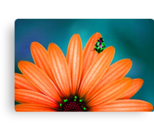 Bright Bug Green Canvas Print