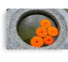 Floating Color Canvas Print