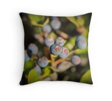 Blue Berry Surprise Throw Pillow