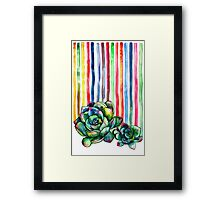 Rainbow Succulents Framed Print