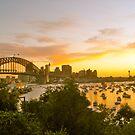 Harbour Bridge at Sunset by Jen Waltmon