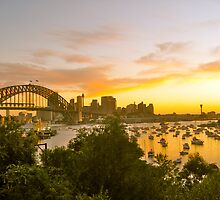 Harbour Bridge at Sunset by Jen Waltmon