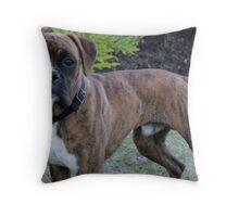 Dog 2 Throw Pillow