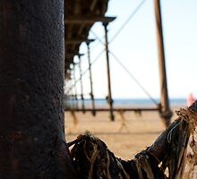 Under the boardwalk by ThePingedHobbit