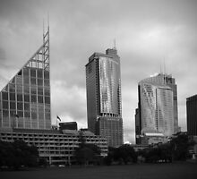 Sydney CBD skyline from The Domain by Speedy