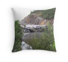 The Dam Throw Pillow