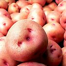 The Farmer's Pink Potatoes by paintingsheep