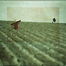 Scarecrow by BrainCandy