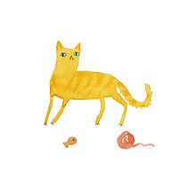 Nice Ginger Cat by Sophie Corrigan