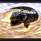 Bluey Lizard by Debbie  Jones