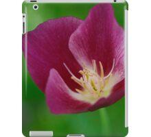 Soft Petal Kisses  iPad Case/Skin
