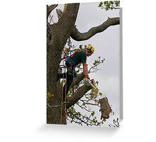Tree surgeon cutting branch Greeting Card
