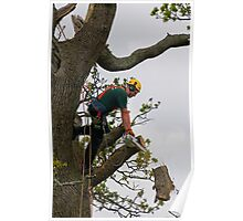Tree surgeon cutting branch Poster