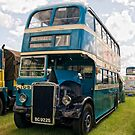 1946 Leyland PD by Aggpup