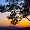 Sunset at Griffith Park #2 by Ray Schiel
